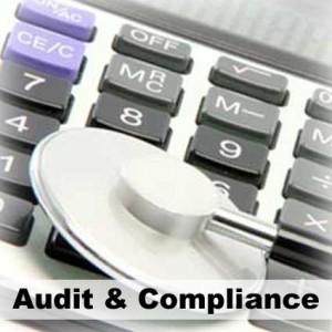 button_audit